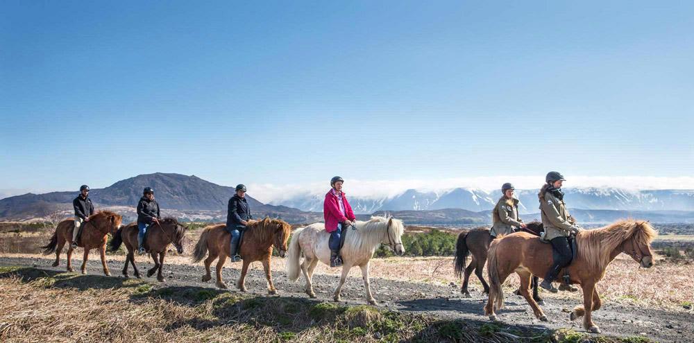 Horse Riding in Iceland | Iceland Horseback Tours ... |Icelandic Horse Tours