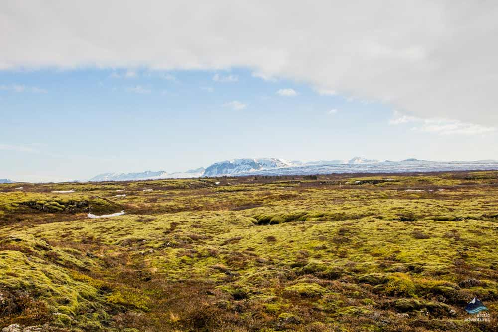 Thingvellir-national-park-Golden-Circle-Iceland