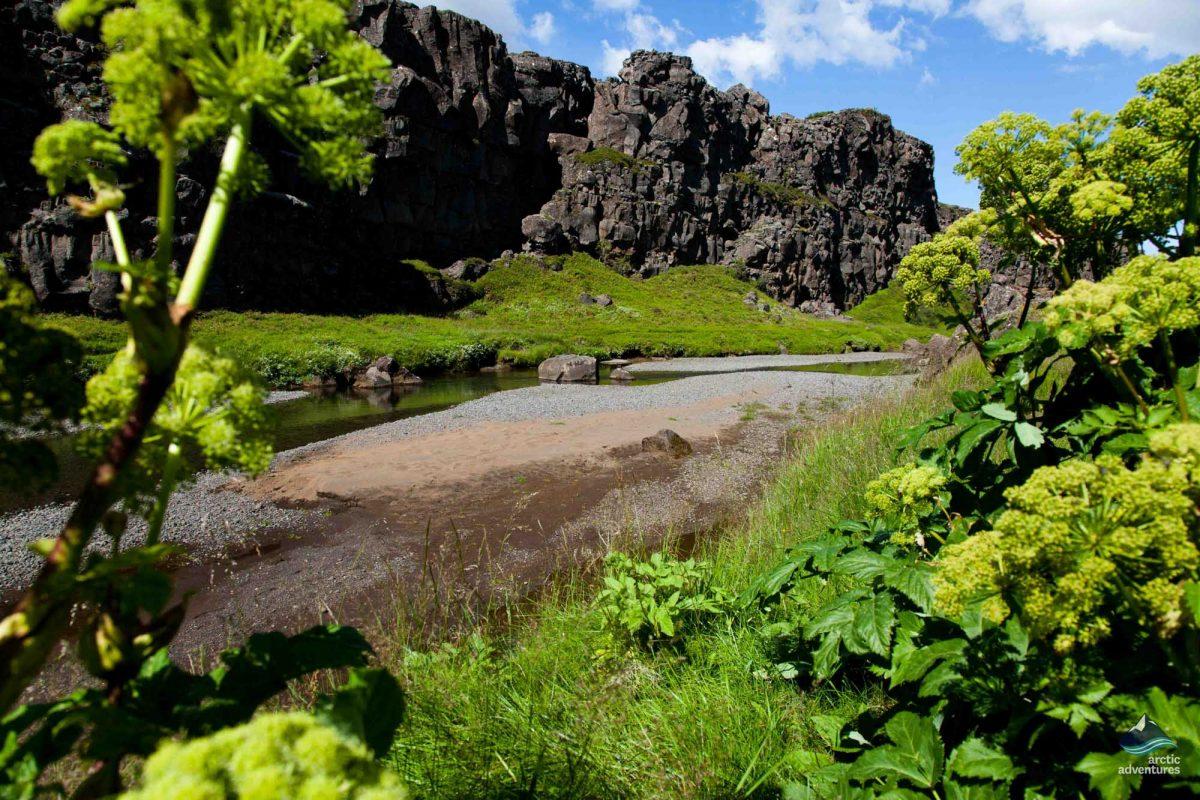 Thingvellir national park in Iceland