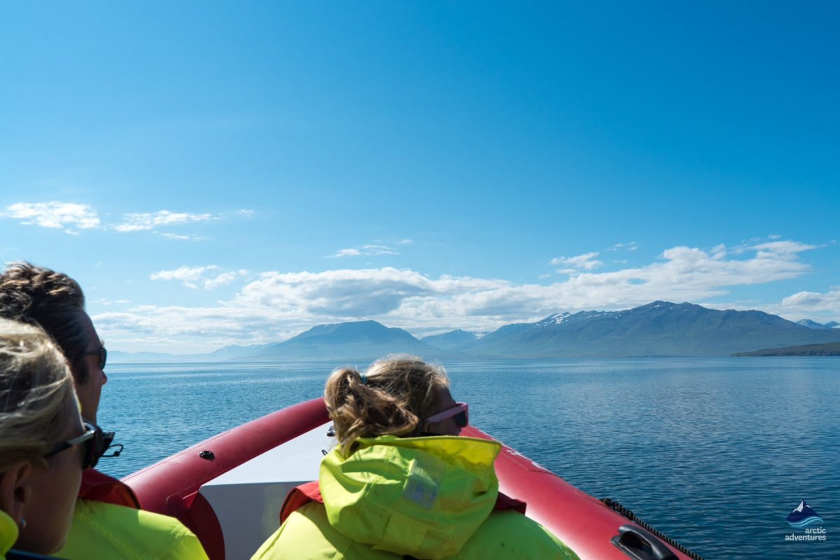 Three people whale watching in a rib boat