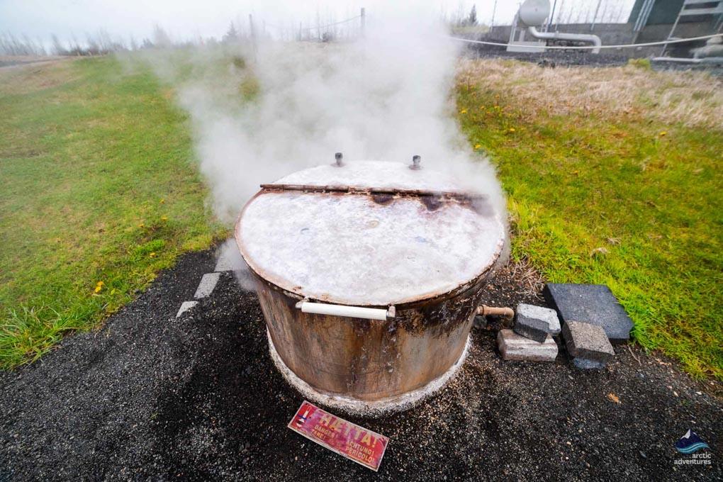 Hot Springs in Hveragerði