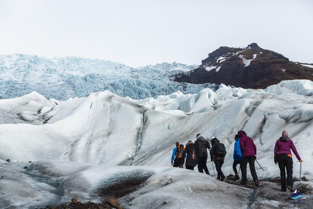 Glacier hiking onFalljokull Glacier