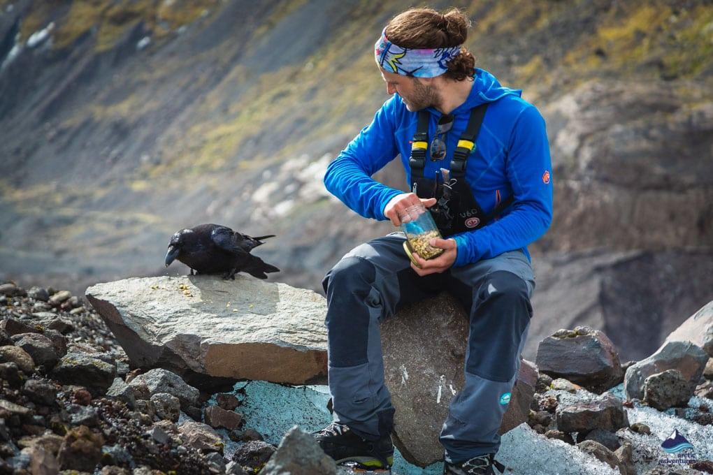 Man feeds raven