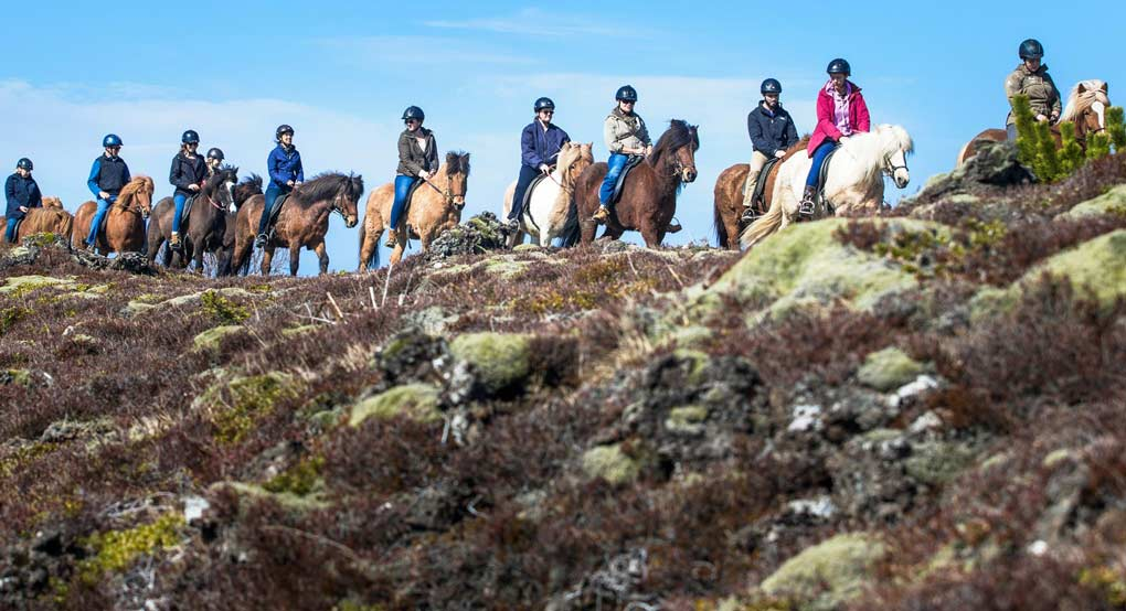 Horse riding tour in Iceland