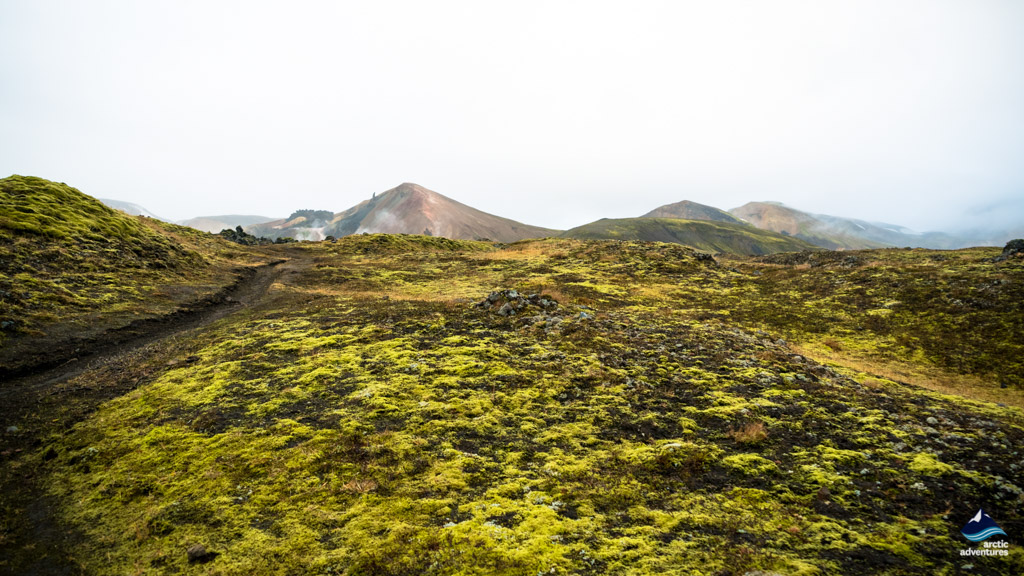 The Lava Field in Landmannalaugar