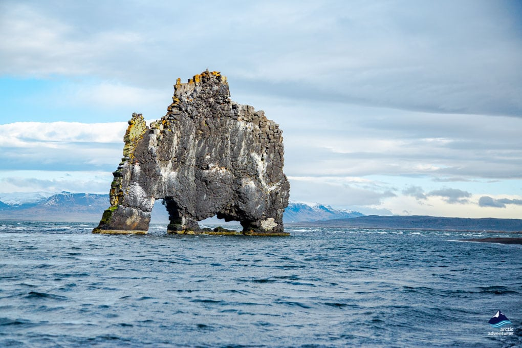 Hvitserkur Dragon Rock Iceland