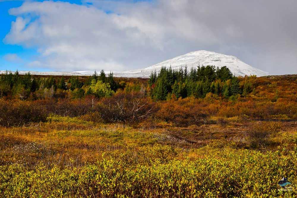 Thingvellir National Park on the Golden Circle