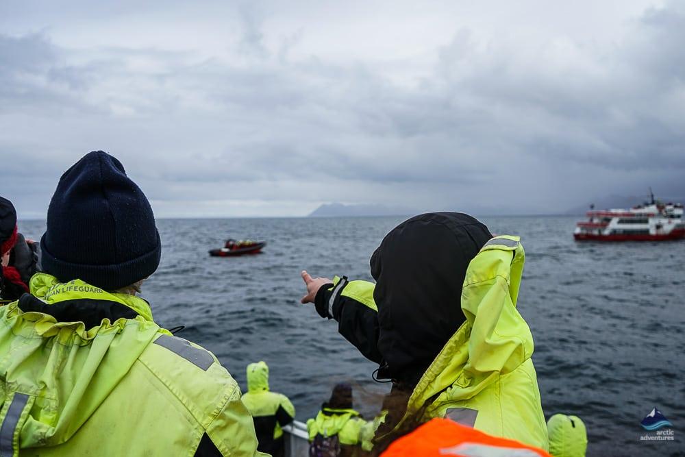 Whale Watching Tour Reykjavík