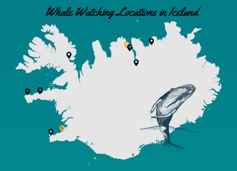 Whale Watching Tour Locations