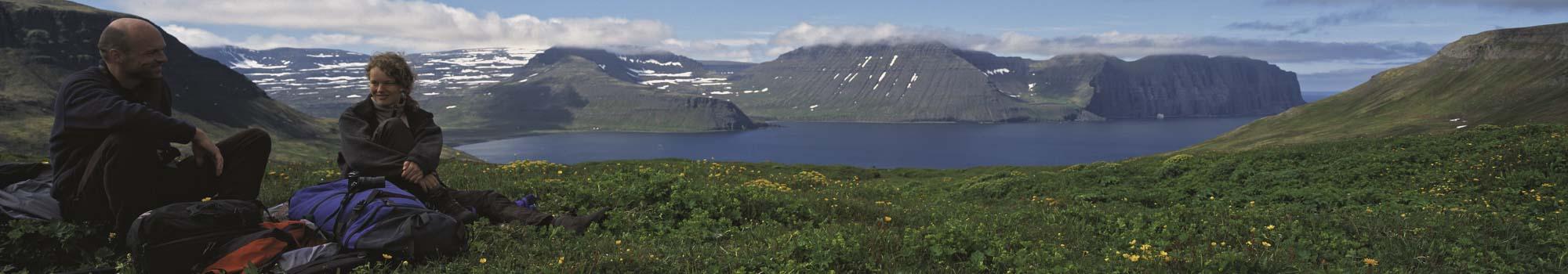 Hornstrandir Westfjords