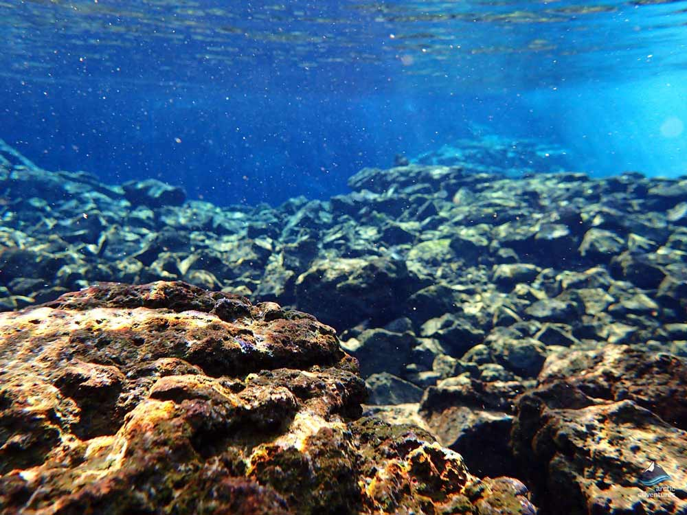 Under the water in Silfra