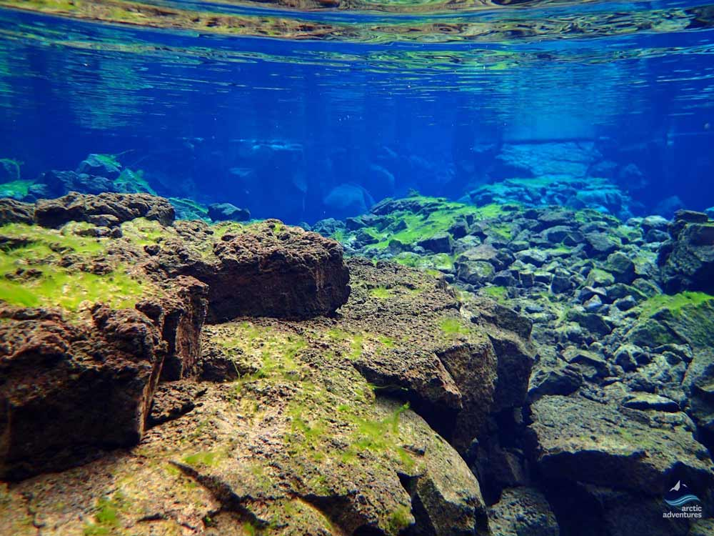 Rocks under the water at Silfra