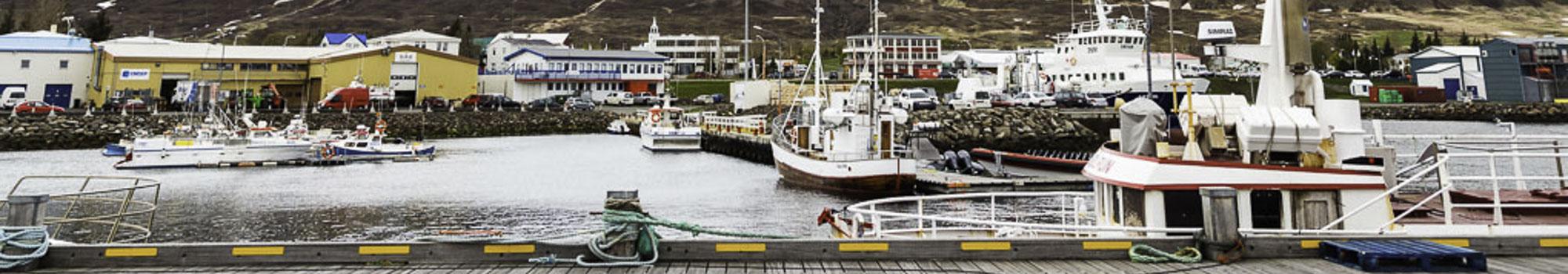 冰岛北部达尔维克的宁静