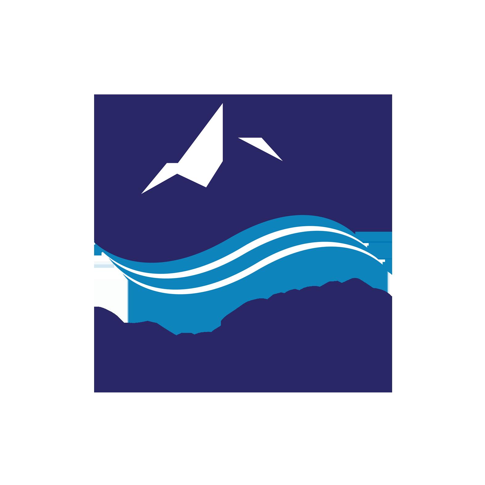 Arctic Adventures logo transparent