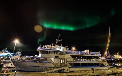 Northern lights boat tour Reykjavik