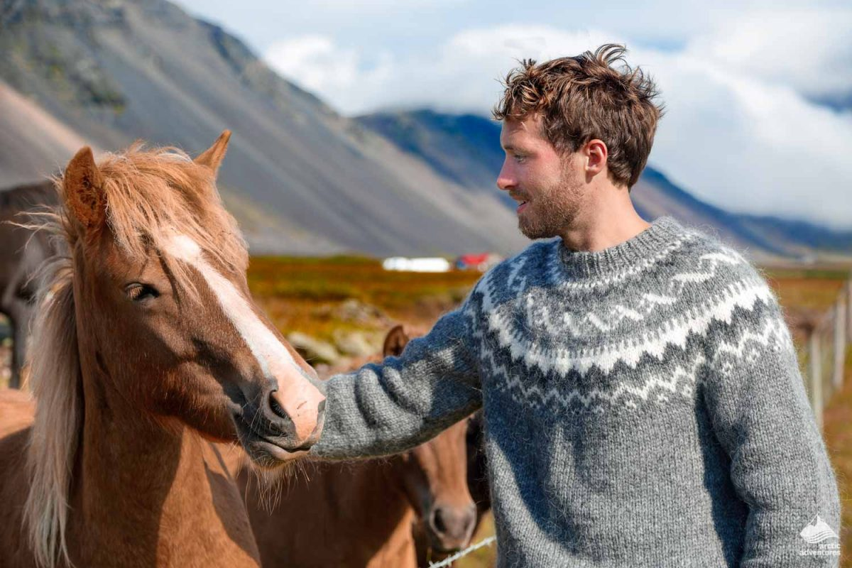 Man petting horse in Iceland