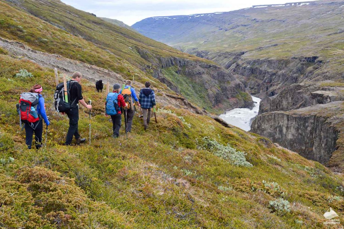 Group of people hiking in Iceland