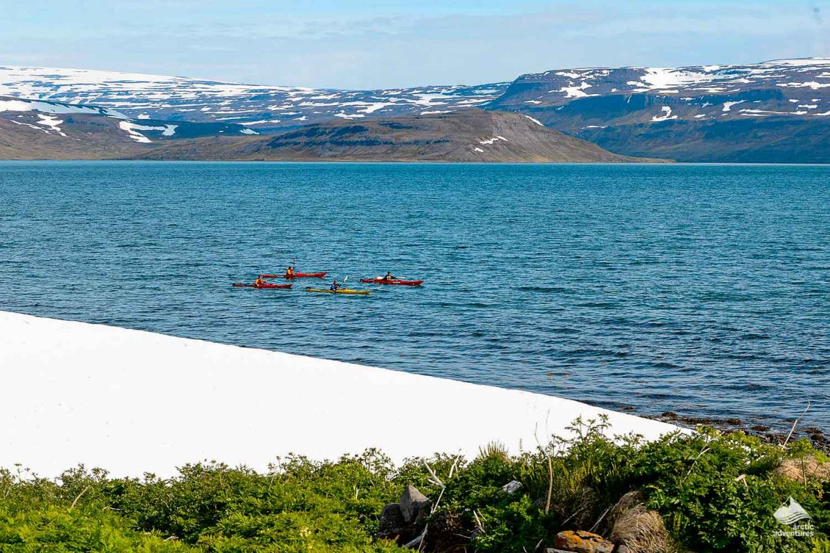 Kayaking in Isafjardardjup fjords in Iceland